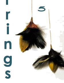 BB's Dharma Feather Earrings